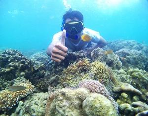 Snorkeling pantai gili ketapang